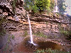 hardraw force wide